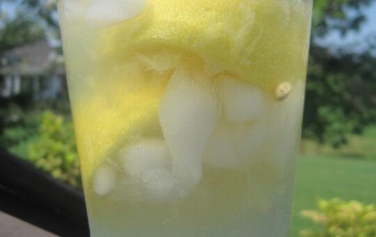 lemon shake up