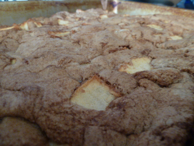 southern living apple cake passionate penny pincher