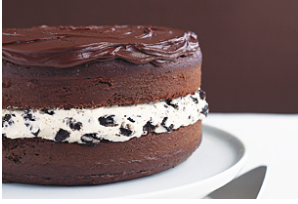 Winn Dixie Cake Decorator
