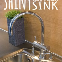 Shiny Kitchen Sink
