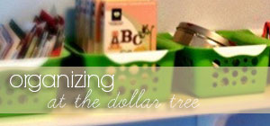 organizing - at the dollar tree