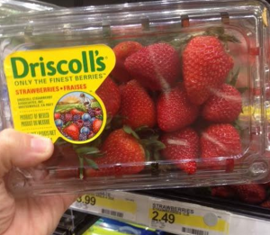 Driscoll strawberry coupons