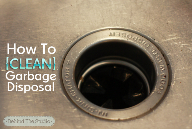 25 Days Of Spring Cleaning Hacks Day 8 Clean Your Garbage