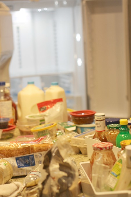 fridge4