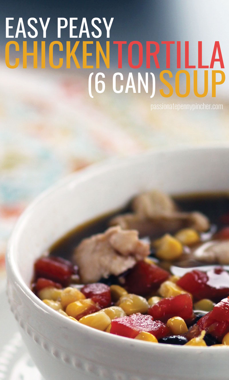 6cansoup3