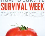 How To Survive Survival Week: 7 Days To Spend Nothing?