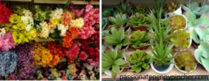 pennypinchflowers