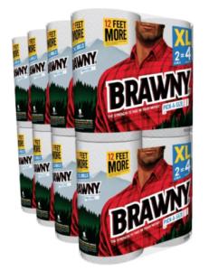 brawny paper towels 2016-06-17 at 8