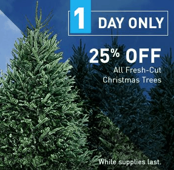 if youre looking to purchase a fresh christmas tree check this out today only 127 lowescom is offering 25 off select fresh christmas trees