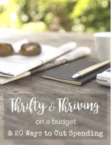 budget4
