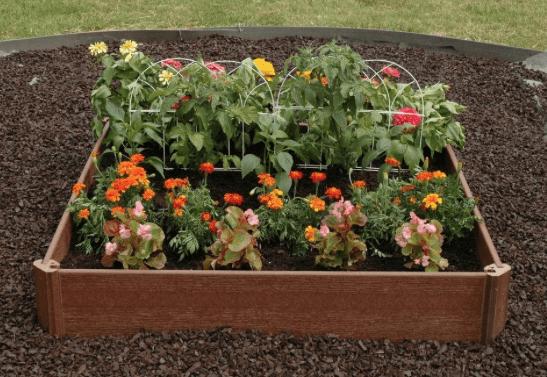 Raised Garden Bed Kit 25 75