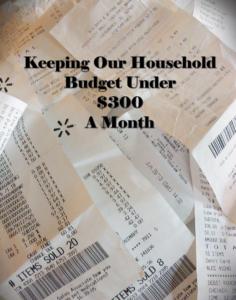 budget17