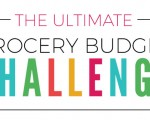 The Ultimate Grocery Budget Challenge - Day 1
