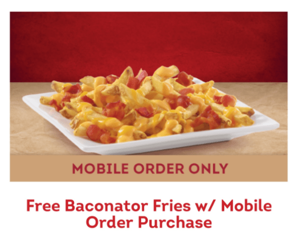 Baconator Fries