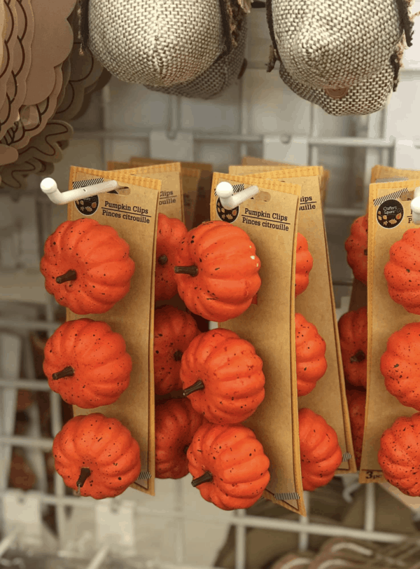 Dollar Tree Fall Decorations 101 Items To Buy