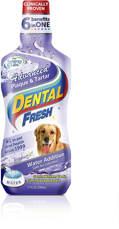 Dental Fresh