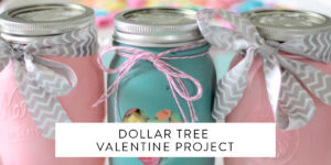 Dollar Tree Valentine Project