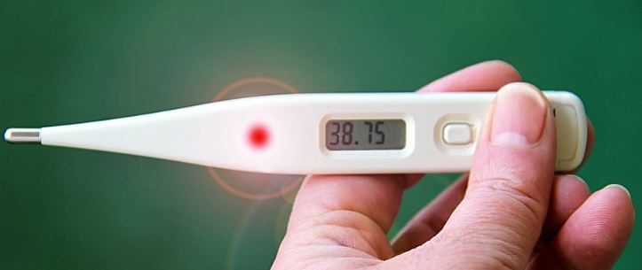 Where to buy a thermometer online