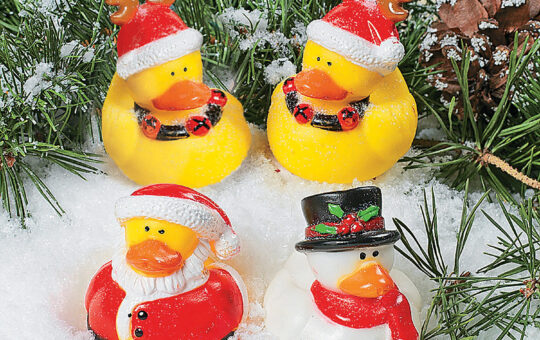 christmas ducks